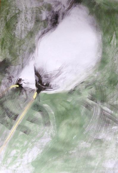 Cottongrass, 70 x 50 cm, 2014