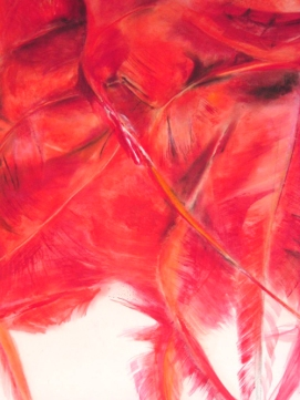 Red Feathers, 100 x 70 cm, 2007